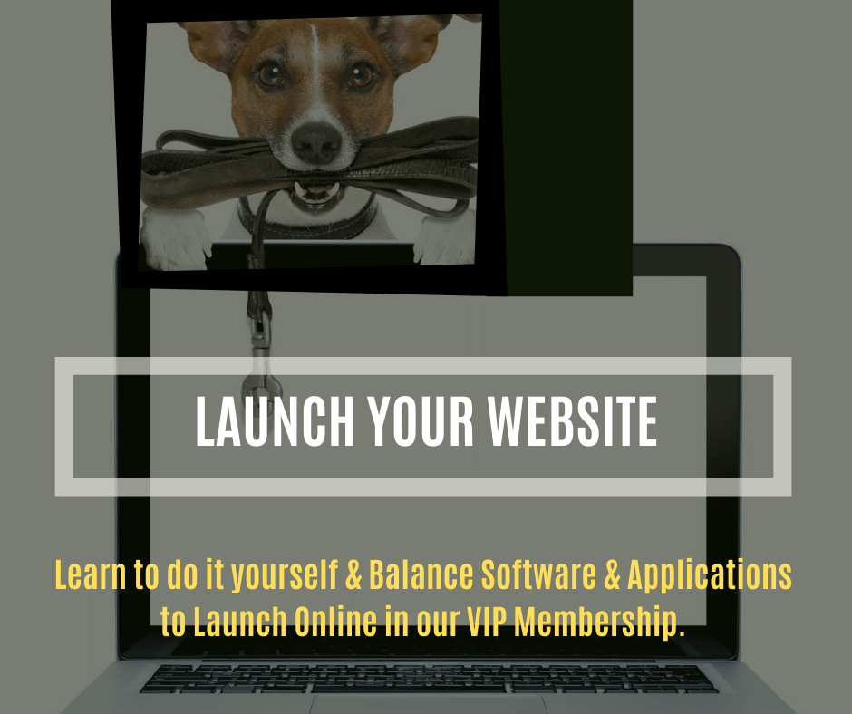 Launch Your Website - course